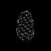 beginner-logo